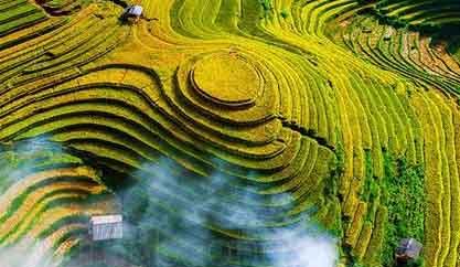 Visit to the golden rice season on Mu Cang Chai, Yen Bai Province