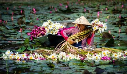 Discovering Mekong Delta in Floating season