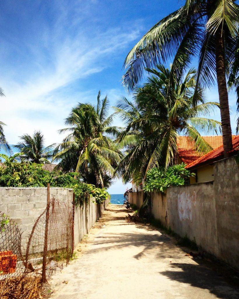 Du lịch Phan Thiết- Phan Thiết đi đâu?- Con đường làng chài với hàng dừa in bóng . Ảnh: @leaveyourowntrail