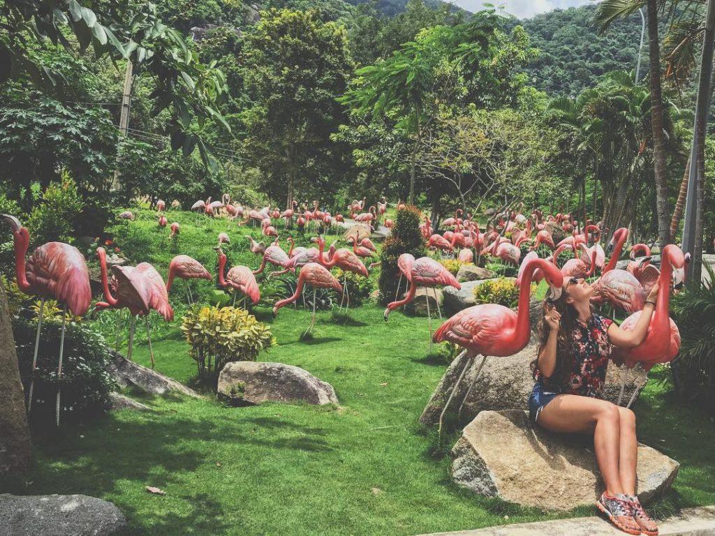 Du lịch Phan Thiết- Phan Thiết đi đâu?- Đây là khu bảo tồn nhiều động vật quý hiếm. Ảnh: @mariabednieri