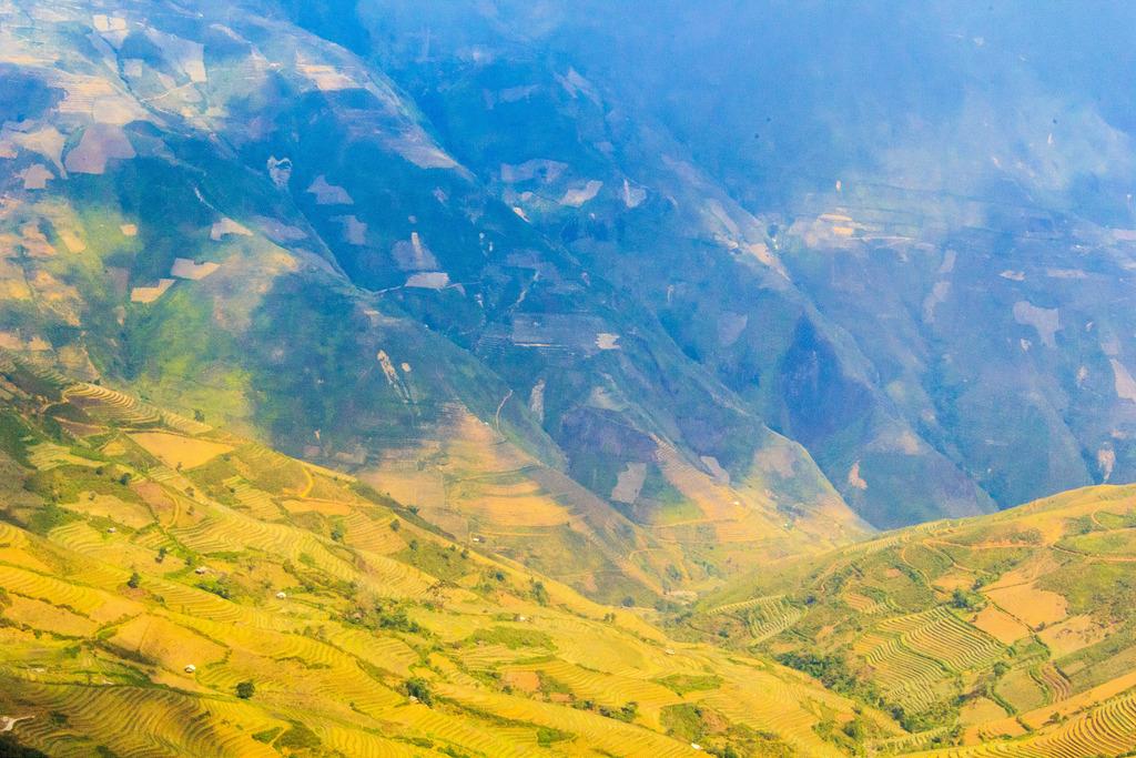 Du lịch Mộc Châu - Những cánh đồng lúa chín trên dài đồi núi Mộc Châu. Ảnh nguyenduongajc