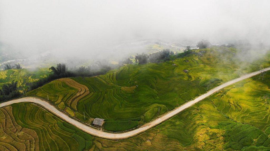 Y Ty- Sapa travel- Mây lùa về trên những thửa ruộng bậc thang thật huyền ảo. Ảnh: @db.anh