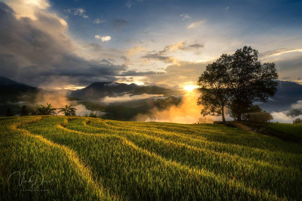 Y Ty- sapa travel- Từng bậc thang vàng óng ánh như dẫn lối đến một thiên đường nào đó tuyệt lắm. Ảnh: Vinh Dav