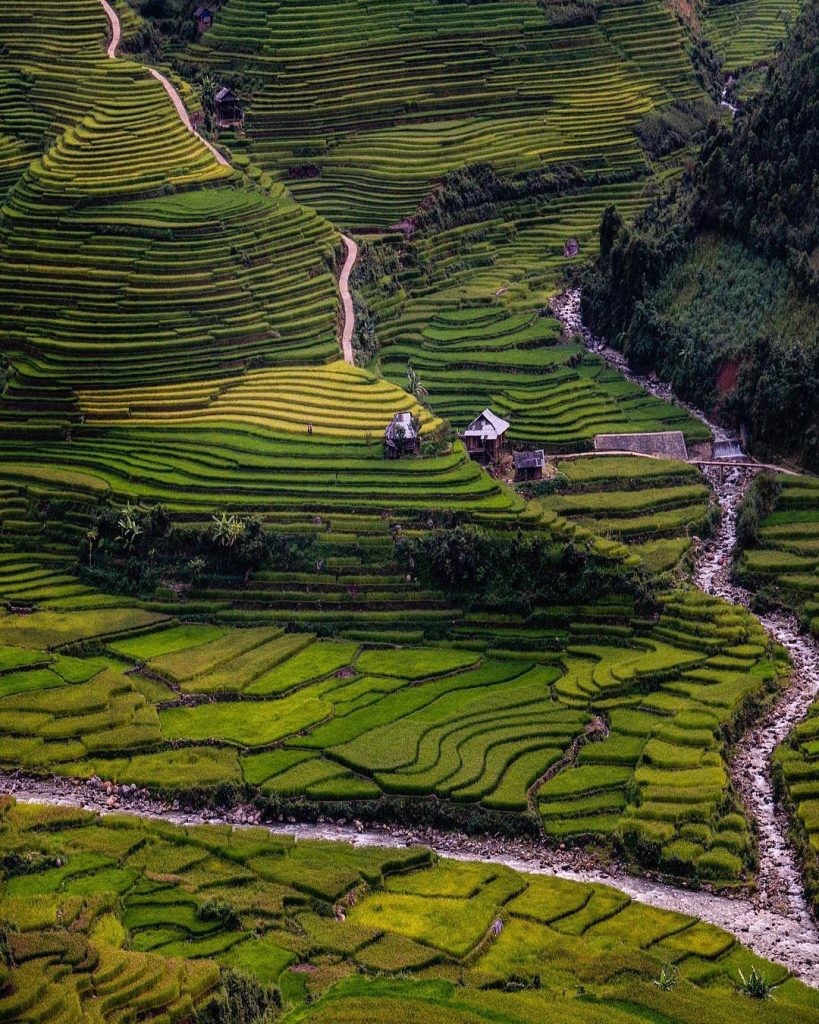 Northern Vietnam travel- beautiful places in Northern Vietnam-The breathtaking view of terraced fields in Sapa. By: @best_earthscapes