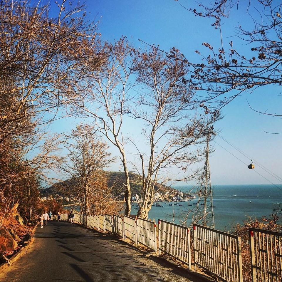 Du lịch miền nam- du lịch miền tây- cảnh đẹp miền tây-Dọc theo con đường Núi Lớn. Ảnh: @Lephuong1335.