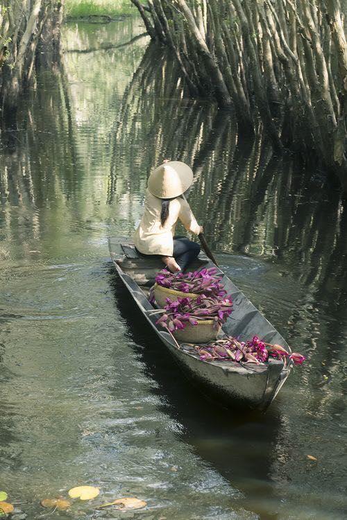 Du lịch miền nam- du lịch miền tây- cảnh đẹp miền tây-Long An mùa nước nổi. Ảnh: Huong Son Pham Le
