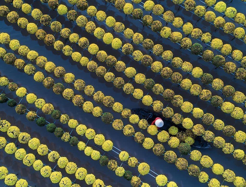 Du lịch miền nam- du lịch miền tây- cảnh đẹp miền tây-Làng hoa Sa Đéc nổi tiếng Đồng Tháp. Ảnh: Trung Pham