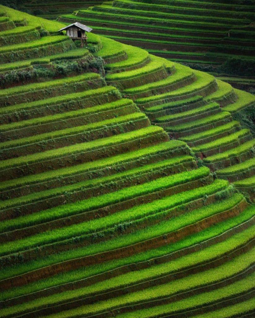Du lịch vùng cao- Du lịch Tây Bắc- Cảnh đẹp Tây Bắc-Mù Cang Chải là nơi có ruộng bậc thang đẹp nhất Việt Nam. Ảnh: @mahendrabakle