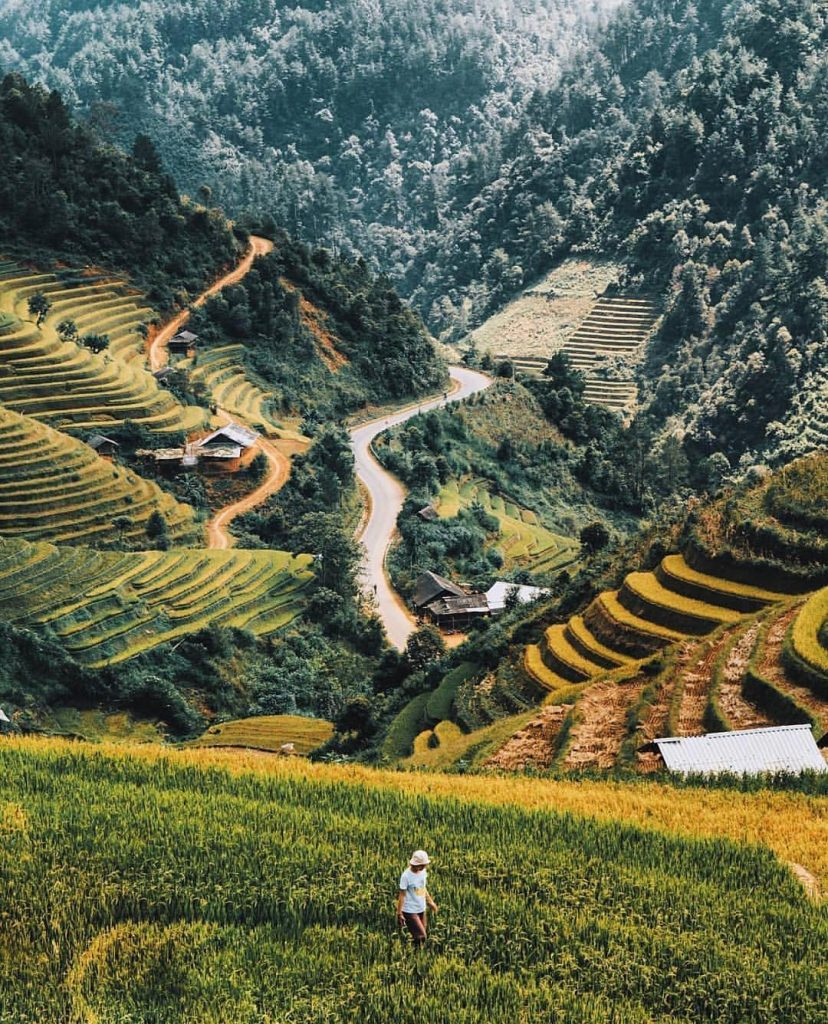 Du lịch vùng cao- Du lịch Tây Bắc- Cảnh đẹp Tây Bắc-Những cánh đồng ruộng bậc thang đẹp như tranh ở Sapa. Ảnh: @theamazinghaianh