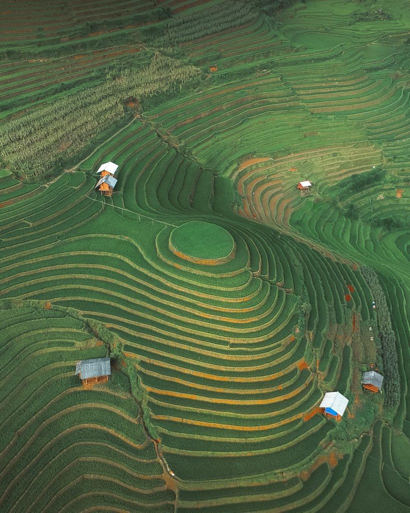 Du lịch vùng cao- Du lịch Tây Bắc- Cảnh đẹp Tây Bắc-Hình ảnh ruộng bậc thang hình mâm xôi quen thuộc và nổi tiếng ở đây. Ảnh: kamvachon