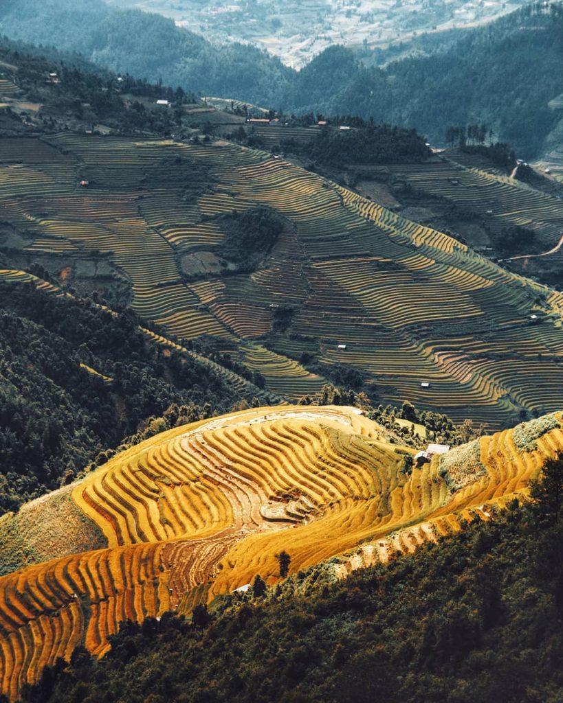 Du lịch vùng cao- Du lịch Tây Bắc- Cảnh đẹp Tây Bắc-Những dãy ruộng bậc thang như dẫn lối đến thiên đường nào đó. Ảnh: theamazinghaianh