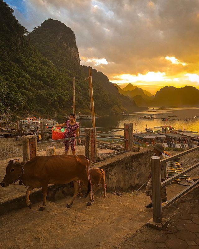 Du lịch Mai Châu - Cảnh đẹp Mai Châu - Thung Nai khi hoàng hôn về chiều. Ảnh: @ash.goldsmith