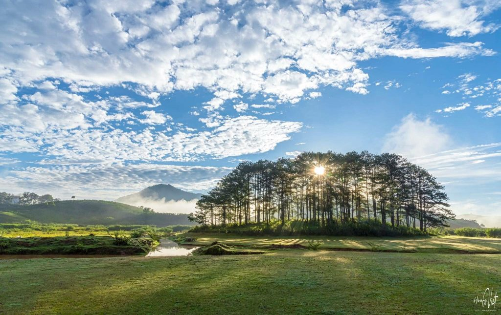 Dalat Travel Guide from A to Z- Dalat travel-Pine forest in Masara valley in Dalat, Lam Dong. Photo : Hoàng Việt