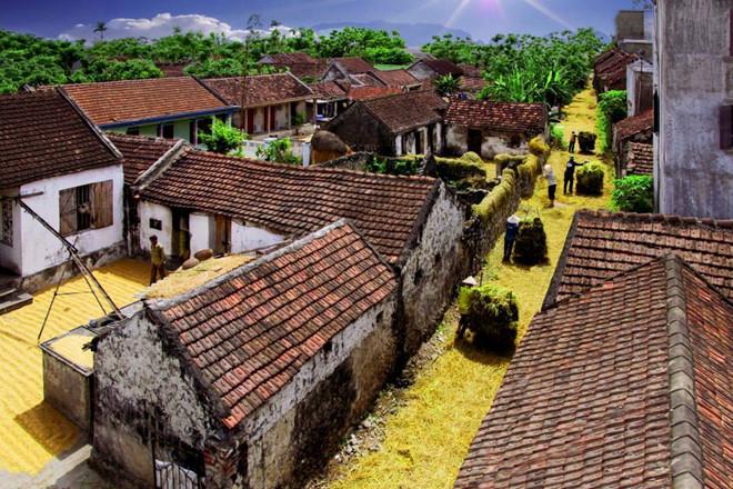 làng quê Ninh Bình- du lịch Ninh Bình-