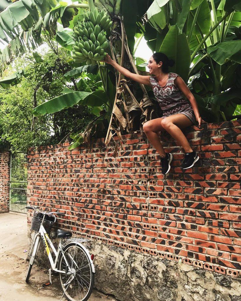 làng quê Ninh Bình- du lịch Ninh Bình-Những bụi chuối sau hè là niềm thích thú của mỗi du khách. Ảnh: @sapeeriortravels