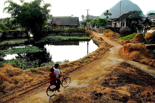làng quê Ninh Bình- du lịch Ninh Bình-Hình ảnh con đường làng phủ đầy rơm rạ . Ảnh: Vũ Đức Phương