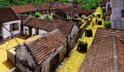 Nét chân quê mộc mạc nơi làng quê Ninh Bình