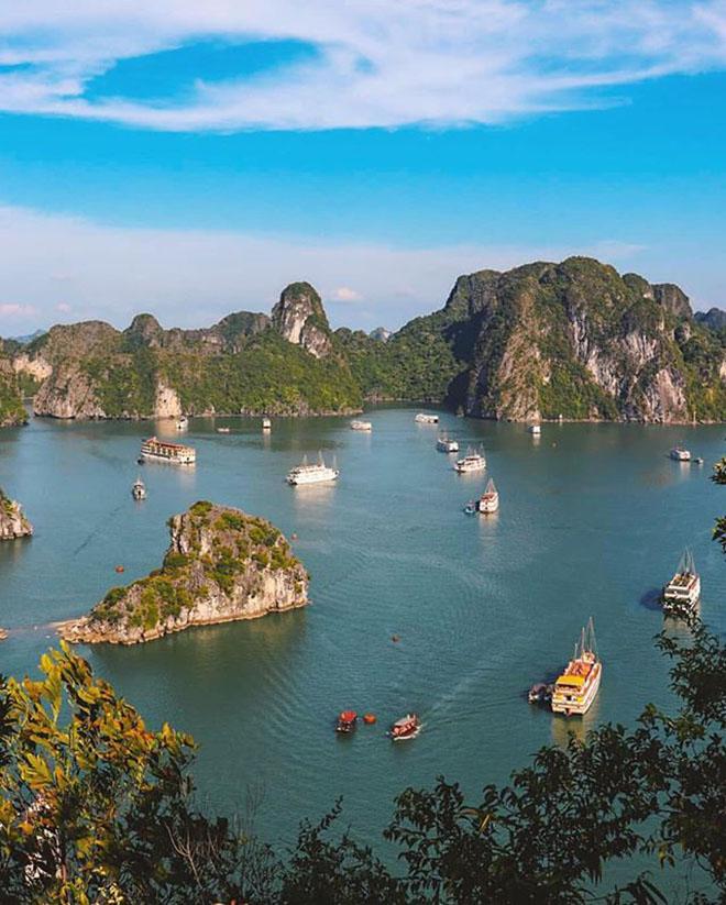 Thu trọn vịnh Hạ Long trên đỉnh Ti Tốp. Ảnh: @theinthusiast
