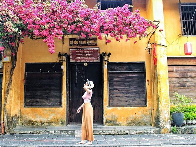 du lịch Hội An - Kinh nghiệm du lịch Hội An - Bí kiếp du lịch Hội An - Bức tường cùng với giàn hoa giấy là điểm chụp hình bao sống ảo ở Hội An. Ảnh: @hiien_nguyen