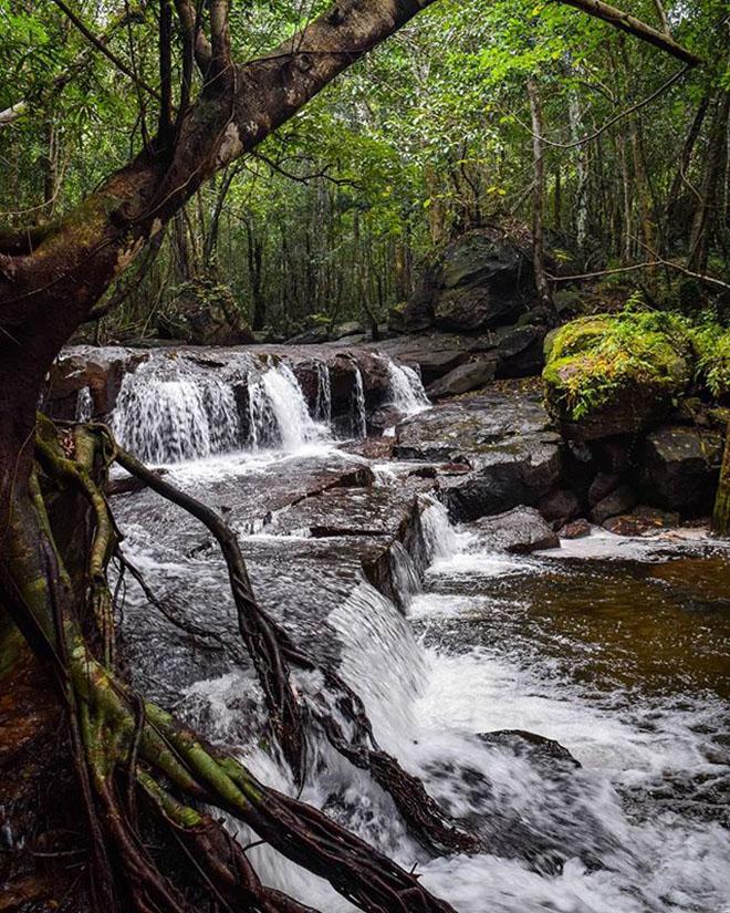 Suối Tranh một bức tranh thiên nhiên thơ mộng giữa núi rừng. Ảnh: @thegallivantinggals