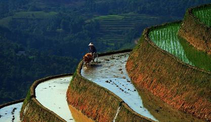 Sapa Travel Guide From A To Z