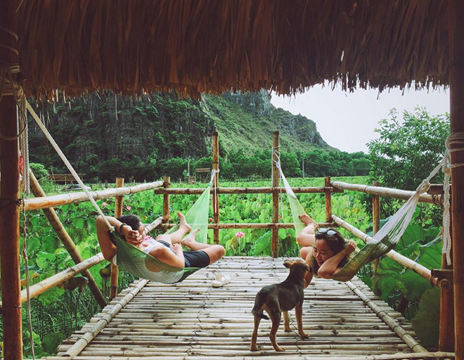 Chez Beo Homestay- Ninh Binh travel guide. Photo: Collection.