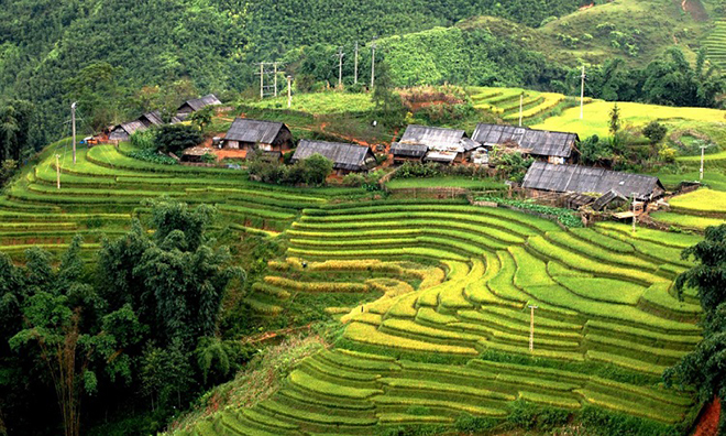 Including eye-catching and comfortable bungalows, the house is amidst striking terraced paddy fields as far as the eye could see. Photo: Collection.