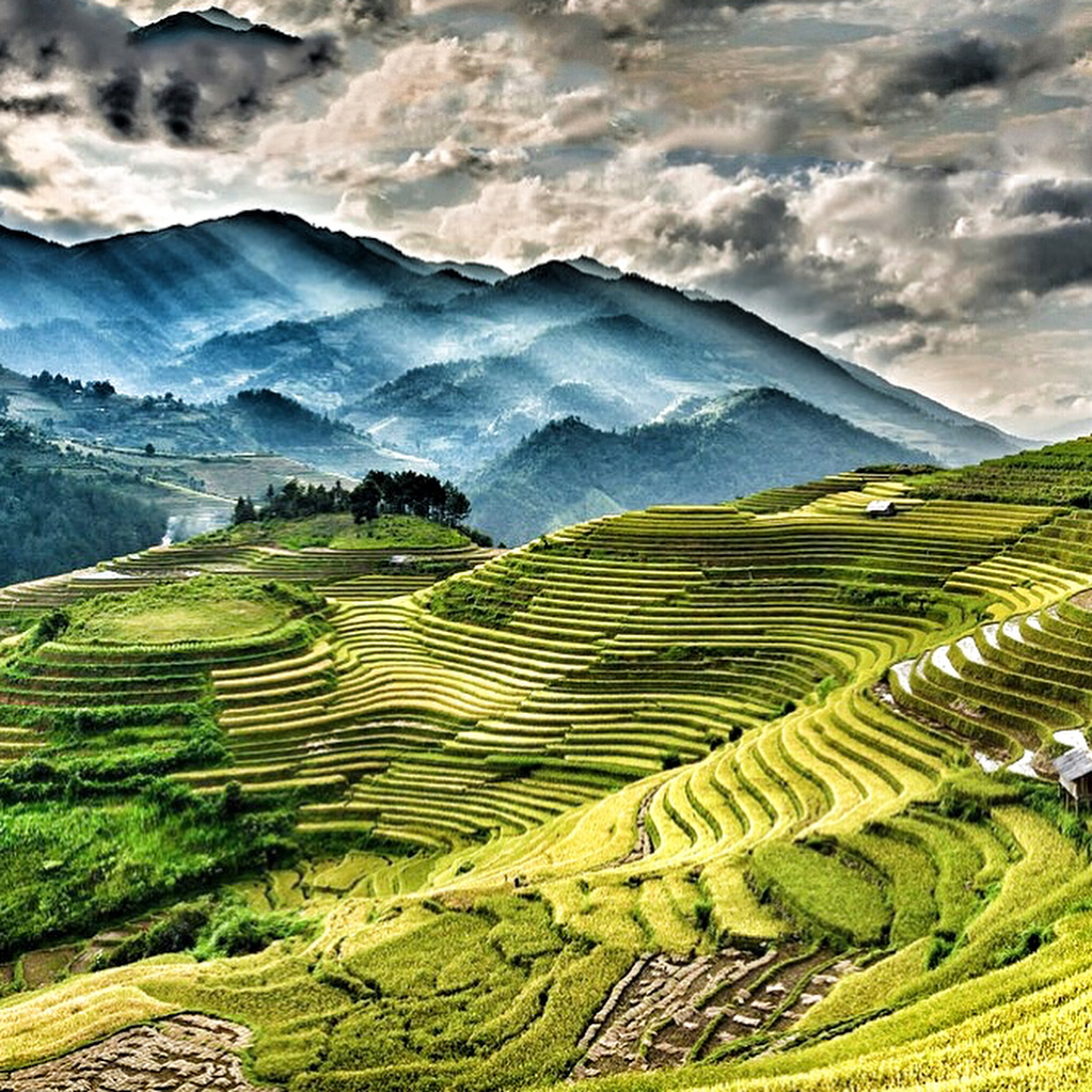 Muong Hoa valley with breathtaking view of terraced fields. Photo: @wealthyadventure