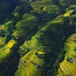Ha Giang Travel Guide From A To Z