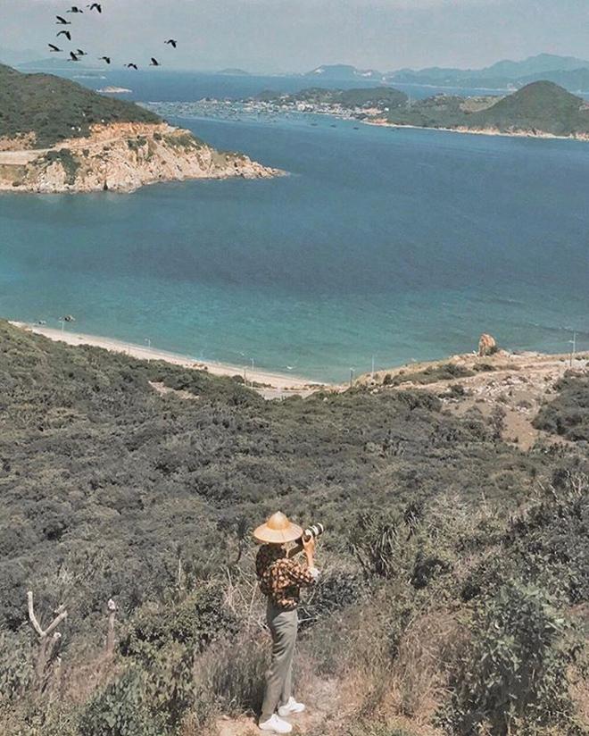 Ninh Thuận hiện lên như bức tranh sinh động với biển và rừng. Ảnh: @tien.phong