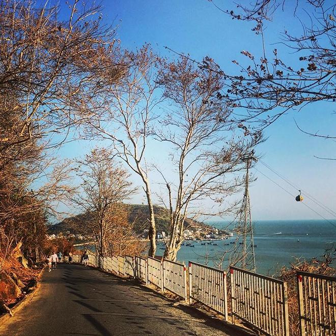 Cảnh quan lãng mạn dọc các con đường quanh bãi biển Vũng Tàu. Ảnh: @Ebytay