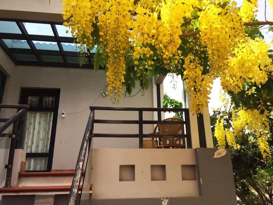 Góc biển Guesthouse-Kinh nghiệm du lịch Bình Thuận. Ảnh: Sưu tầm