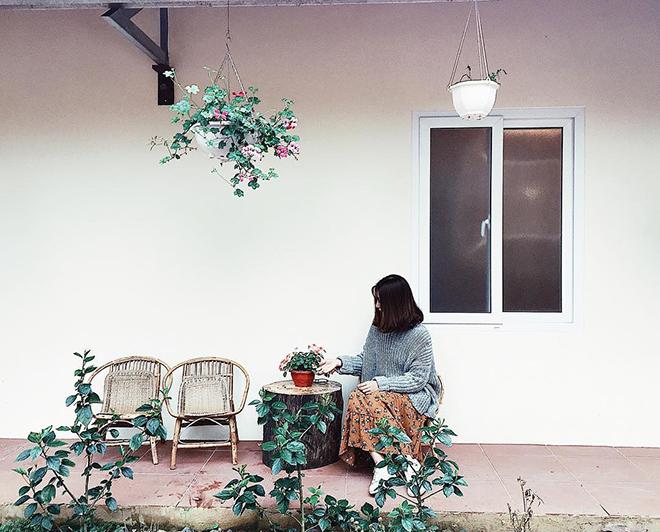 Bơ House homestay- kinh nghiệm du lịch Mộc Châu. Ảnh: @ocxacu