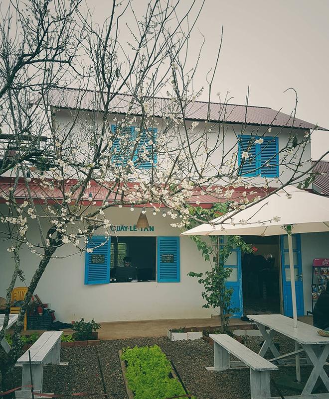 MAMA's House Homestay- kinh nghiệm du lịch Mộc Châu. Ảnh: Sưu tầm